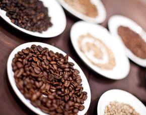 Kaffeeseminar - Dresden mit Verkostung