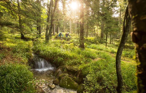 mountainbike-erlebnis-kurs-viechtach