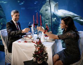 Dinner unter Wasser für Zwei  München Dinner unter Wasser, 3-Gänge-Menü, inkl. Getränke