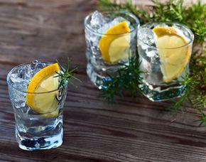 gin tasting f r gourmet verschenken mydays. Black Bedroom Furniture Sets. Home Design Ideas