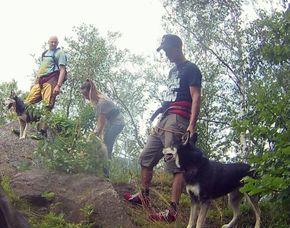 Husky - Trekking - Tabarz 4 Stunden
