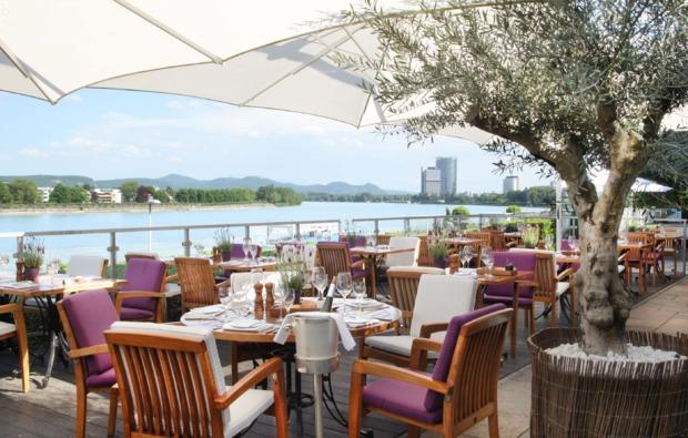 design-hotel-bonn-terrasse
