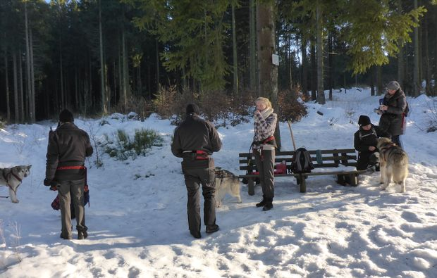 husky-trekking-clausthal-zellerfeld-entspannung
