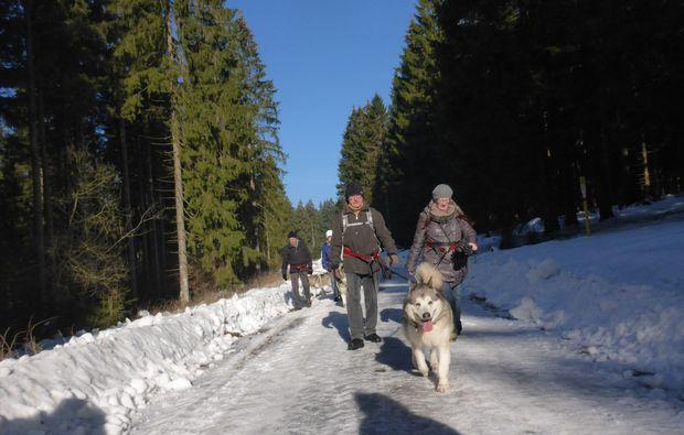 husky-trekking-clausthal-zellerfeld-outdoor