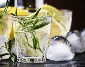 Gin Tasting Bonn