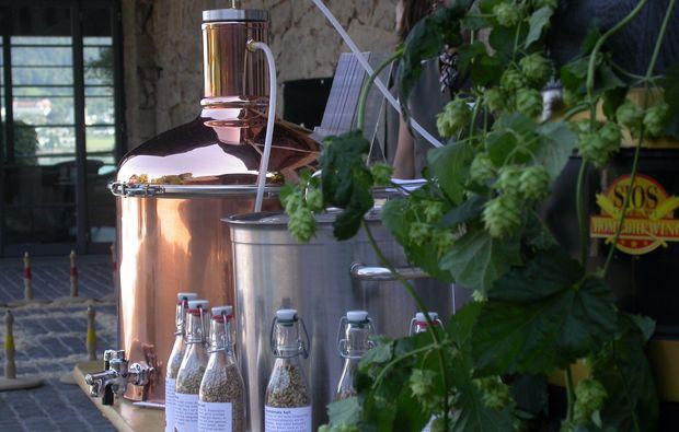 braukurs-wald-bier