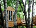 Bild Baumhaus Übernachtung - Baumhaus Übernachtung – verwirkliche Deinen Kindheitstraum!