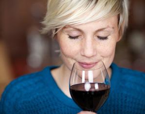 Wein und Schokolade - Zürich Verkostung von mehreren Weinen & Schokolade