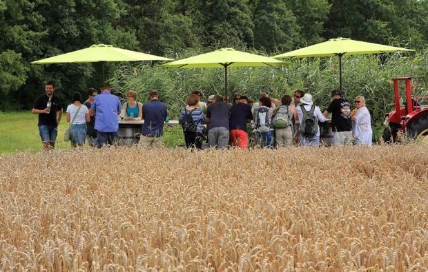 weinverkostung-zeilitzheim-bg3
