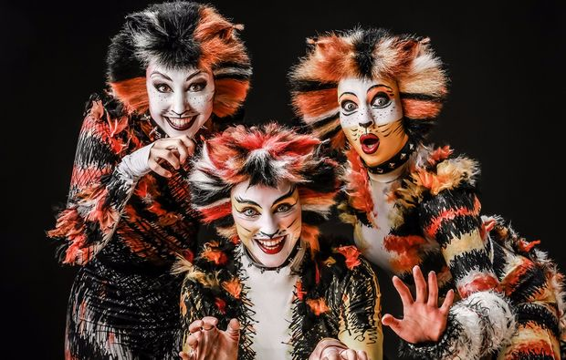 musical-dinner-halle-saale-cats