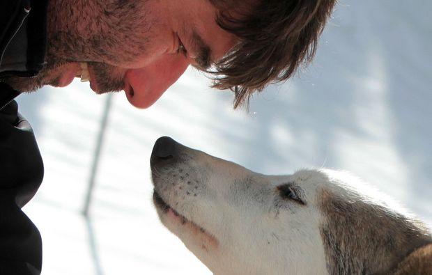 schlittenhunde-fahrt-trentino-suedtirol51511194048