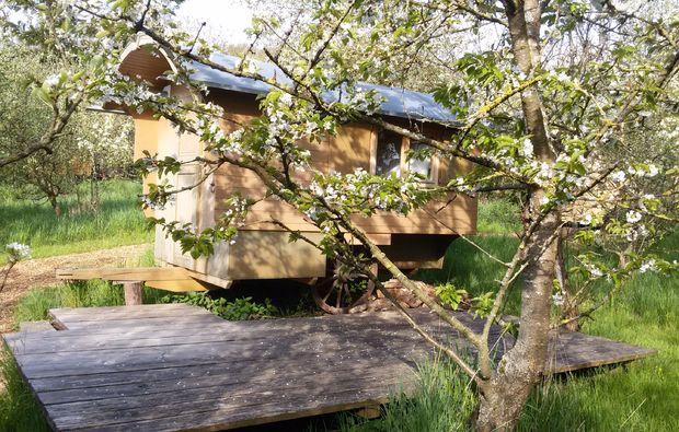 schaeferwagen-uebernachtung-sulzfeld-natur-geniessen