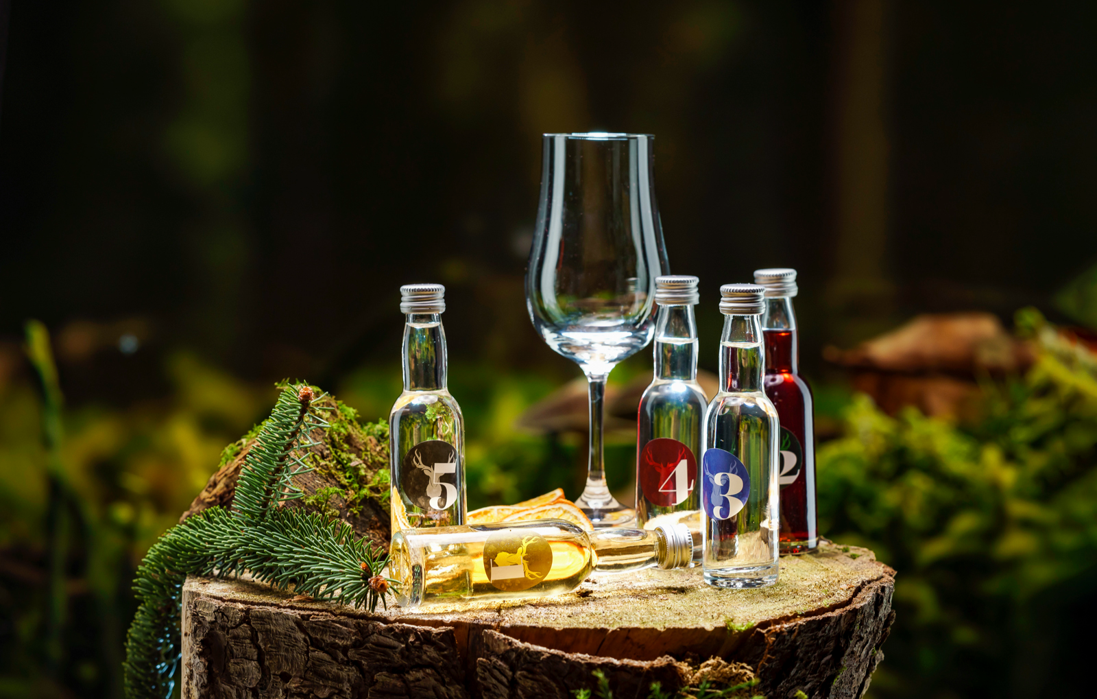 gin-tasting-freiburg-im-breisgau-bg4