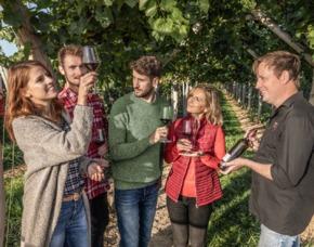 Kulinarische Weinbergwanderung   Worms mit Verkostung,  6-Gänge-Menü & Besichtigung des Kräutergartens
