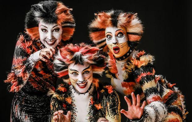 musical-und-dinner-bielefeld-cats