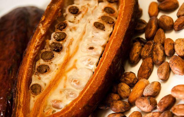 schokoladenverkostung-stuttgart-bohne