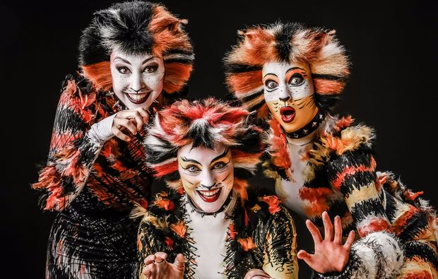 musical-dinner-wiesenthau-cats