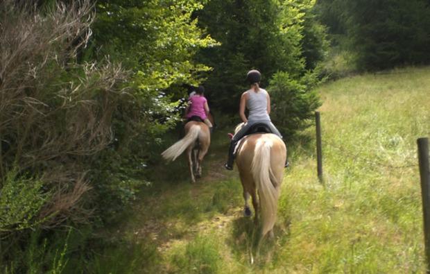 pferde-abenteuer-sassenburg-reiten