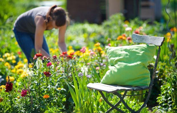 urban-gardening-friedberg-frau