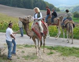 2-gruppe-kamelreiten