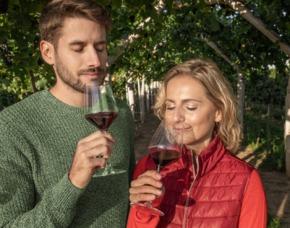 Weinseminar Flein