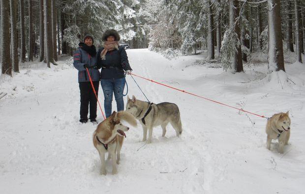husky-trekking-kulz-winter