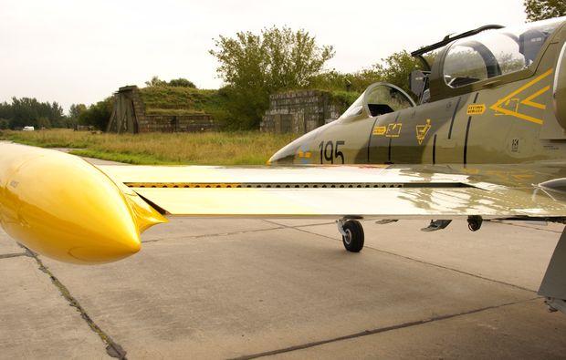 jet-fliegen-bueren-l-39-albatros