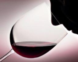 Dine & Wine - Bern 7-Gänge-Menü mit 14 Weinen