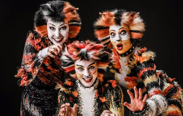 musical-dinner-bottrop-cats