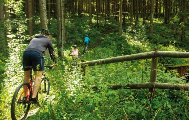 mountainbike-kurs-clausthal-zellerfeld-gelaende