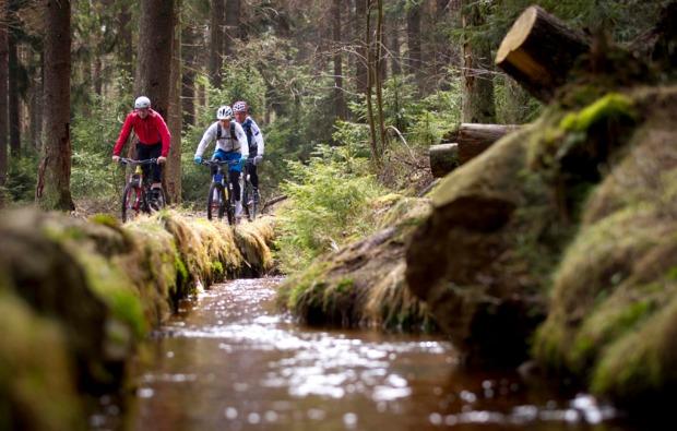 mountainbike-kurs-clausthal-zellerfeld-wald