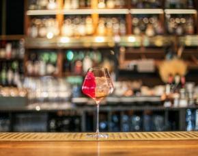 Gin Tasting Berlin