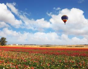 Ballonfahren Weiden 60 - 90 Minuten