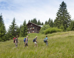Übernachtung auf der Alm für Zwei Deluxe Oberstdorf Wannenkopfhütte - Fackelwanderung, 3-Gänge-Menü