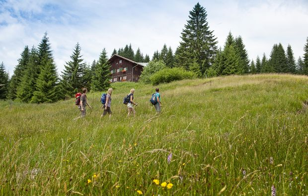 almhuetten-berghotels-oberstdorf-panorama