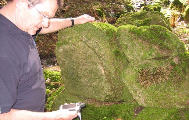 geocaching-gernsbach-nature