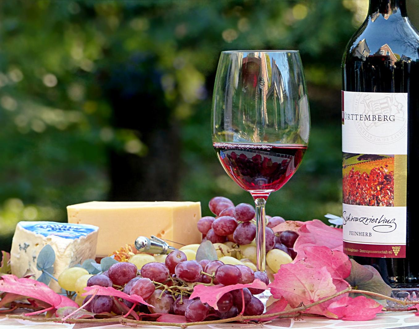 Wein und Käse Seminar Berts Weinexpress Verkostung von mehreren Weinen & Sorten Käse