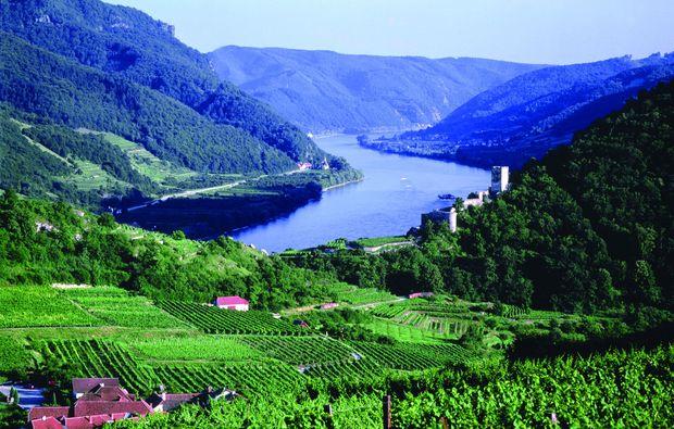 schlemmen-traeumen-emmersdorf-an-der-donau-natur