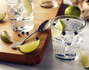 Gin-Tasting - Schokoladen und Denkfabrik - Wuppertal von 10 Sorten Gin & Tonic Water
