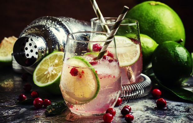 gin-tasting-muenster-seminar