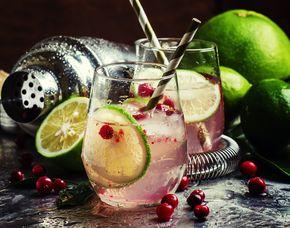 Gin-Tasting - Sepia 5.12 - Münster von 10 Sorten Gin & Tonic Water