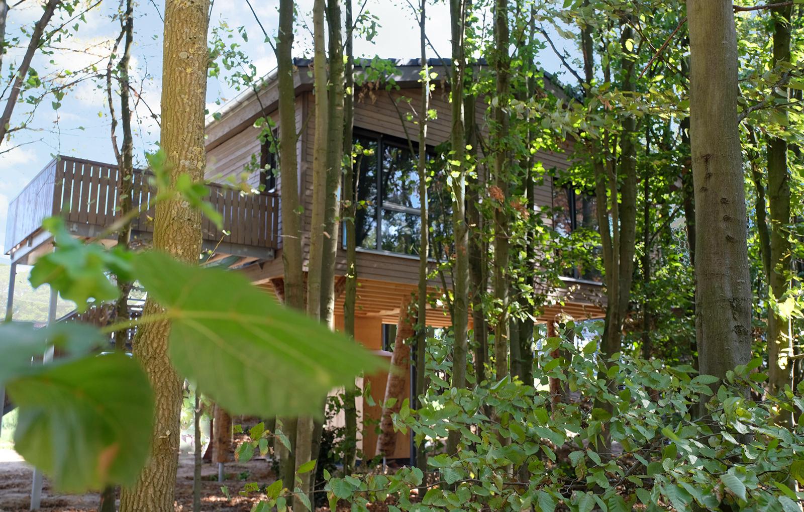 baumhaushotel-neuss-bg11630504168