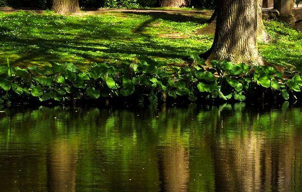 fotokurs-bremen-gruen