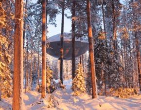 Erlebnisreisen Lappland, Schweden
