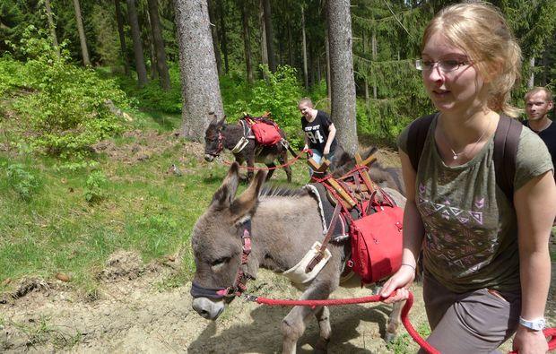tour-eseltrekking-heinade-fackelwanderung-wandertour