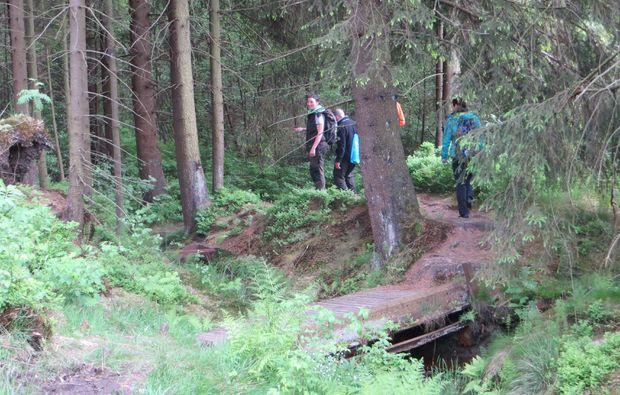 geocaching-clausthal-zellerfeld-wald