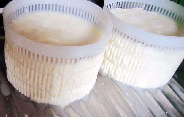 kaese-selber-machen-waldlaubersheim-bei-bingen-molke
