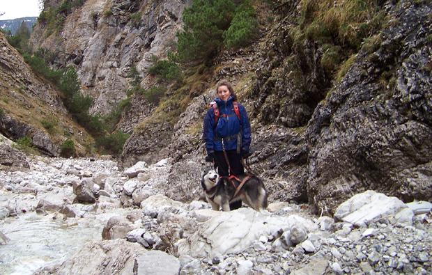 trekking-husky