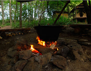 Outdoor-Tagescamp Pflanzen- und Knotenkunde, Klettern, Floßbau – ca. 8 Stunden