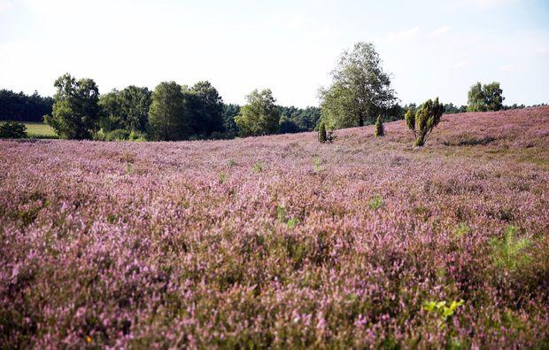 kuschelwochenende-kirchdorf-natur